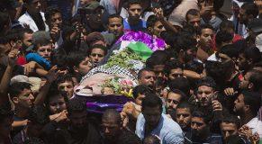 palestine dead